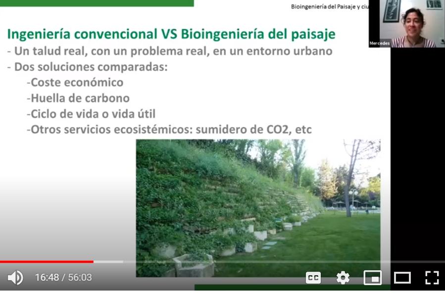webinar bioingeniería urbana